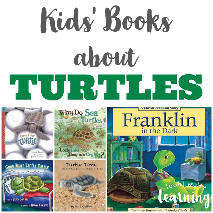 Turtle Books for Kids