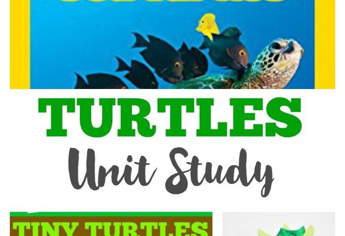 Homeschool Unit Studies: Turtles Unit Study