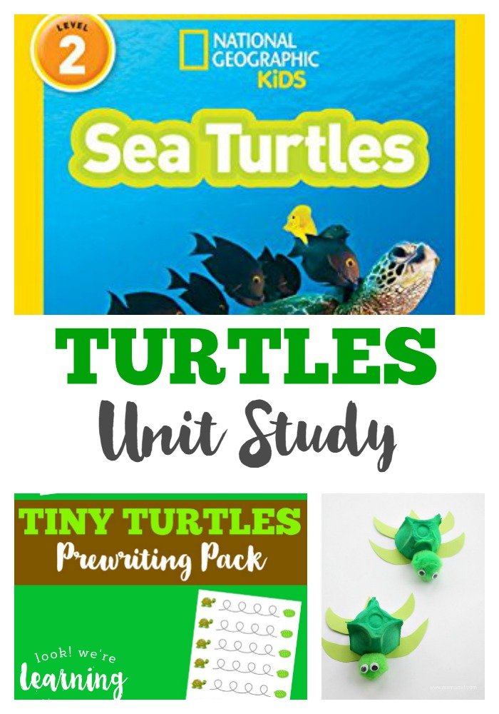 Turtles Unit Study