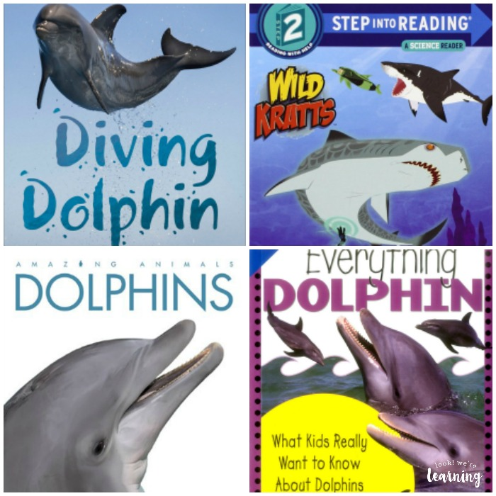 Dolphin Books for Kids to Read