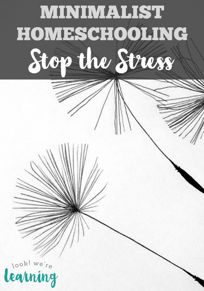 Minimalist Homeschooling - Stop the Stress