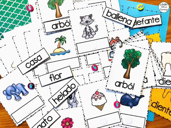 Spanish Alphabet Learning Flashcards for Kids