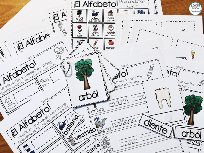 Spanish Alphabet Lesson for Early Grades