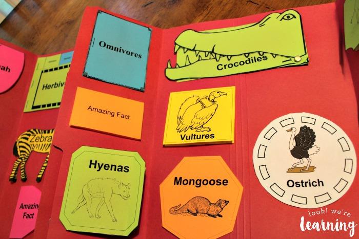 African Savannah Lapbook Layout Ideas