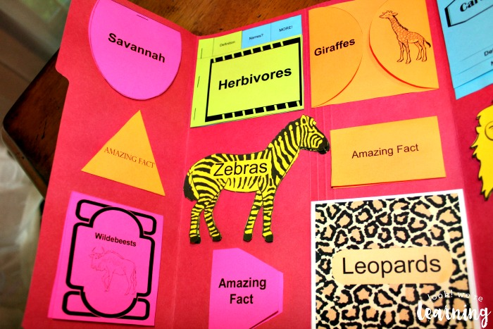 African Savannah Lapbook Layout