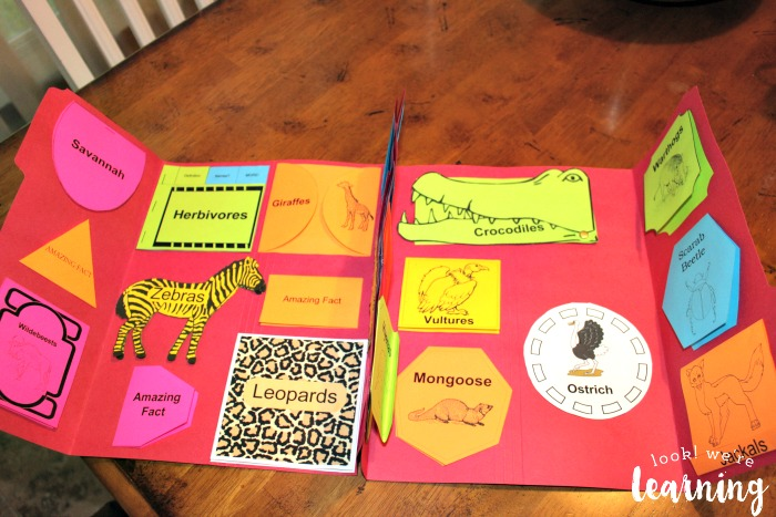 African Savannah Lapbook at a Glance