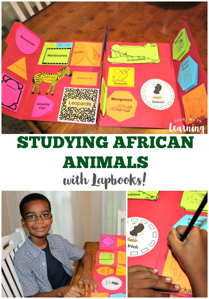 Creatures of the African Savannah Lapbook Review