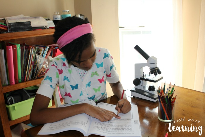 Drawing Observations in a Science Notebook