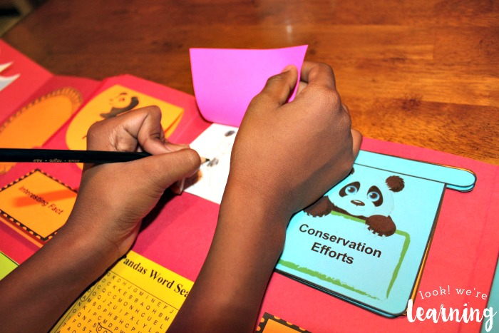 Drawing with Panda Coloring Pages