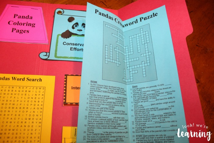 Giant Panda Lapbook Crossword Puzzle