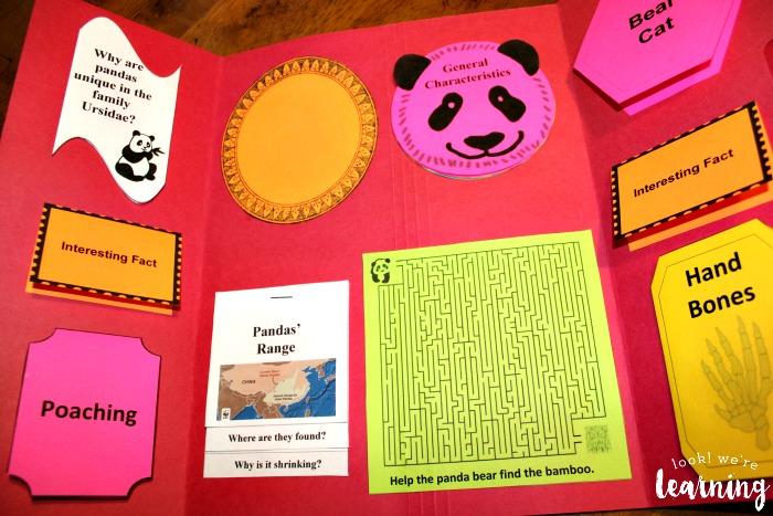 Giant Panda Lapbook Minibooks