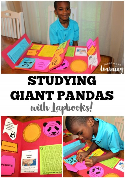 Giant Panda Lapbook for Homeschoolers