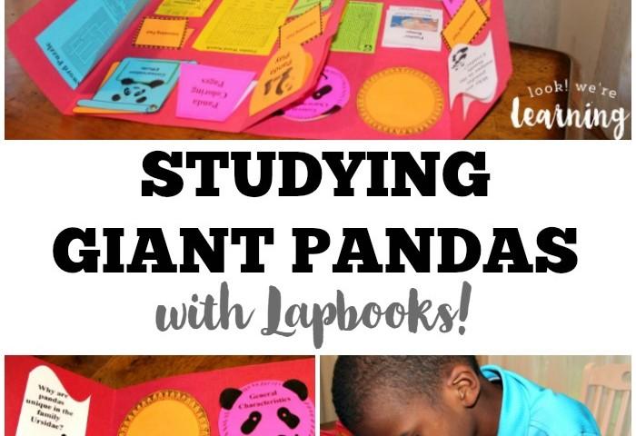 Giant Panda Lapbook
