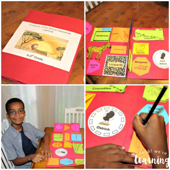 Studying Animals of the African Savannah with Lapbooks