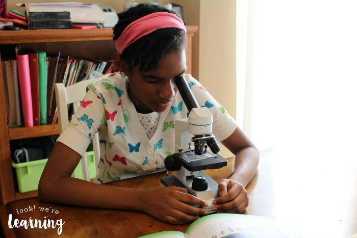 Testing Out a Microscope in Middle School
