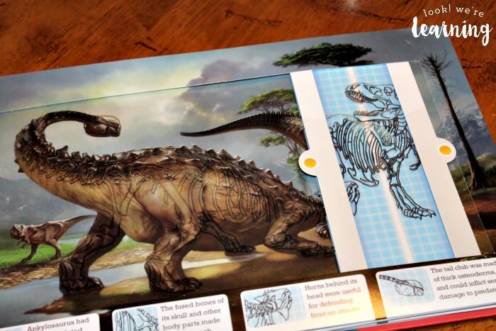 Examining Dinosaur Skeletons