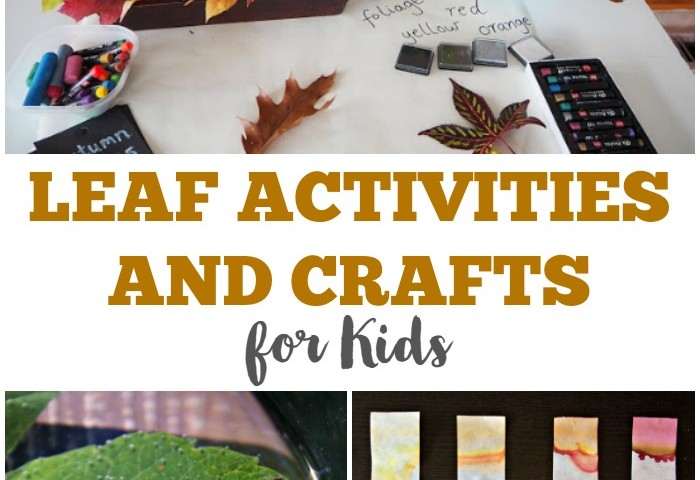 25 Leaf Activities for Kids