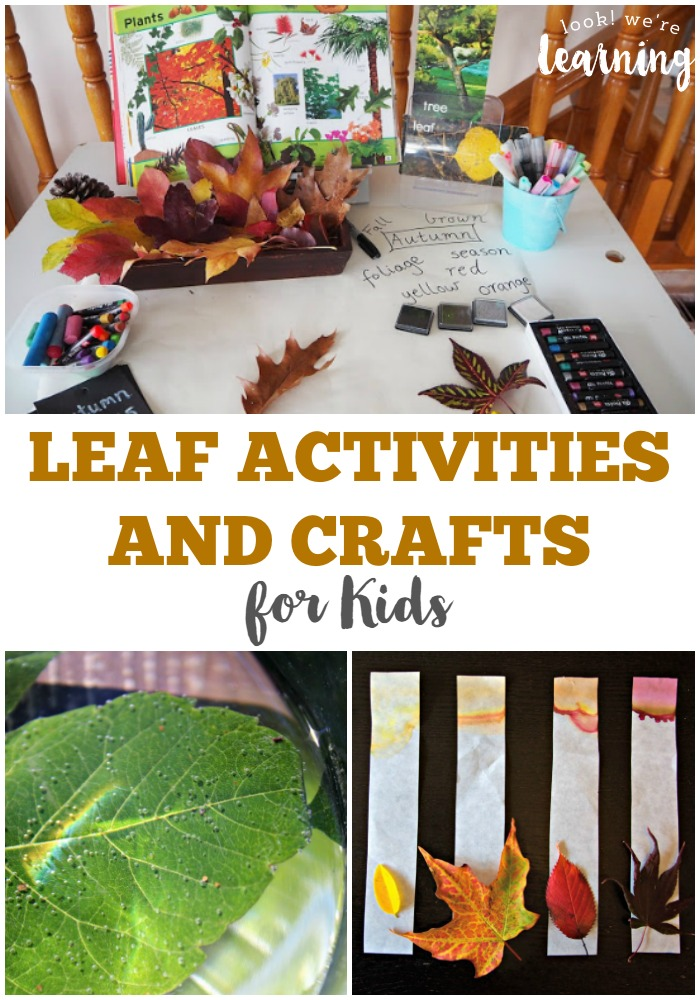 Fun Fall Leaf Activities for Kids @ Look! We're Learning!