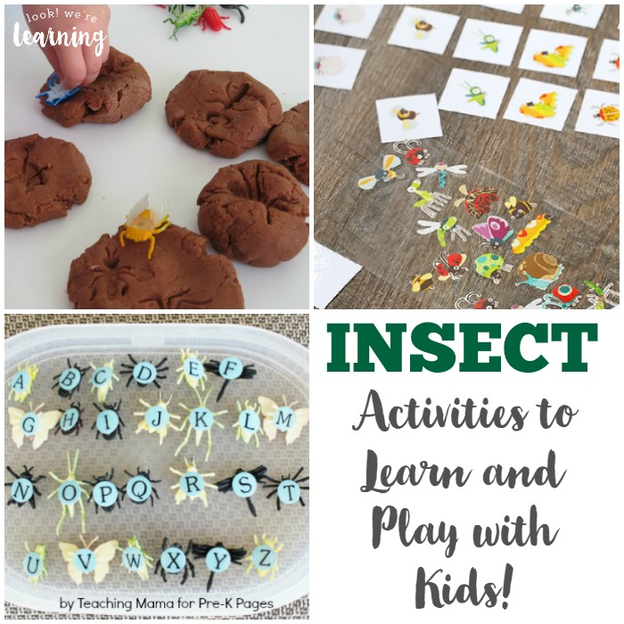 Insect Activities for Kids - Look! We're Learning!