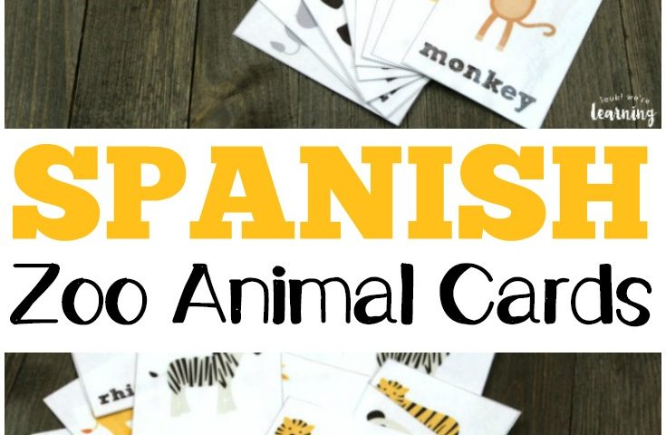 Printable Spanish Flashcards: Spanish Zoo Animal Flashcards