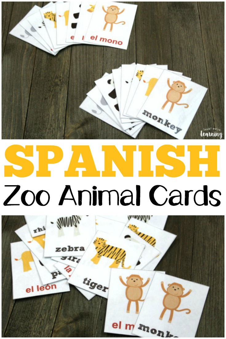 picture relating to Printable Zoo Animals identify Spanish Zoo Animal Flashcards - Physical appearance! Ended up Discovering!