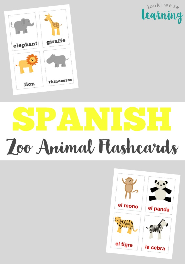 graphic regarding Zoo Animal Flash Cards Free Printable called Spanish Zoo Animal Flashcards - Visual appeal! Have been Discovering!
