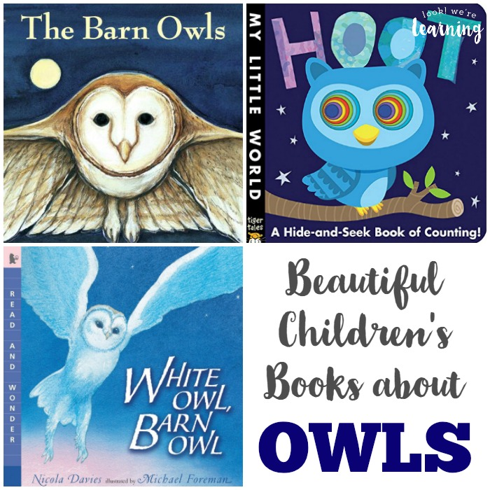 Beautiful Owl Books for Kids - Look! We're Learning!