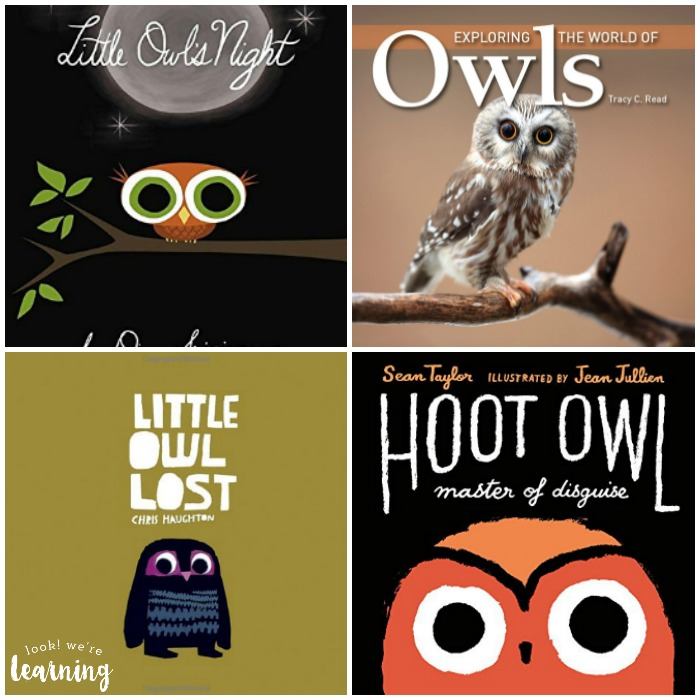 Books about Owls for Kids - Look! We're Learning!