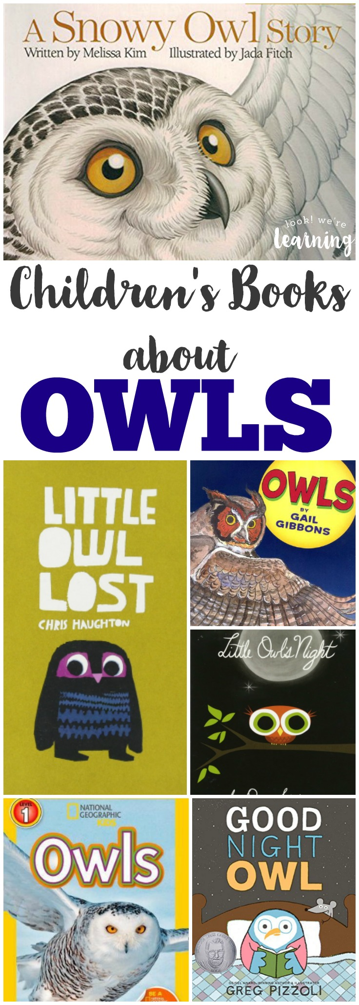 Learn about nocturnal flyers with these beautiful owl books for kids!