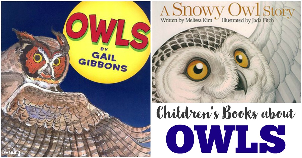 Owl Books for Kids to Read
