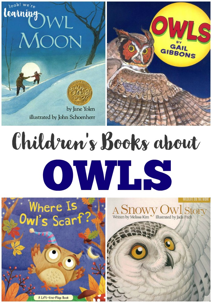 These owl books for kids feature gorgeous pictures and illustrations for learning about these nocturnal flyers!
