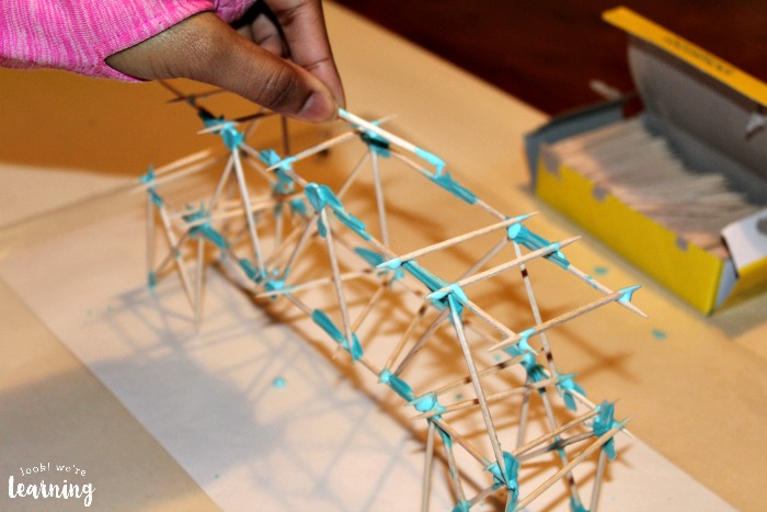 Assembling a Toothpick Bridge