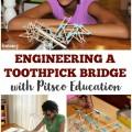 Engineering a Toothpick Bridge for Kids