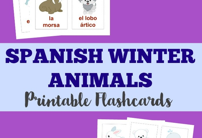 Printable Spanish Flashcards: Spanish Winter Animals Flashcards
