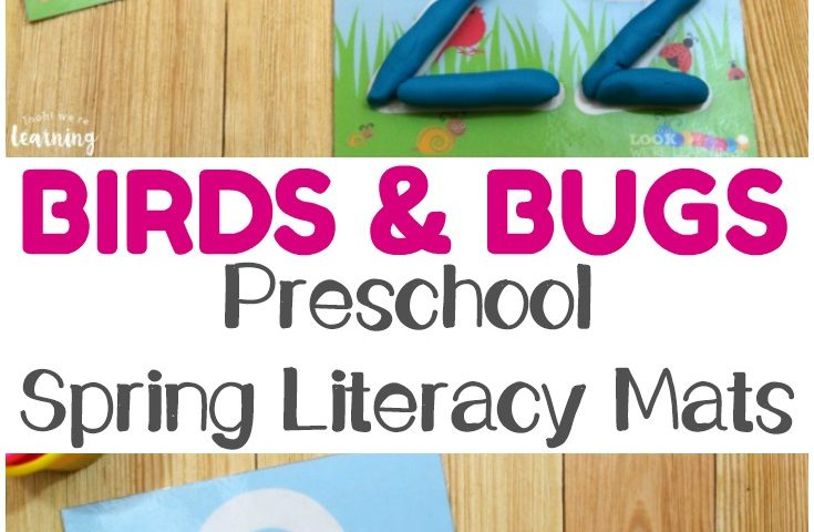 Preschool Playdough Mats: Birds and Bugs Spring Playdough Mats