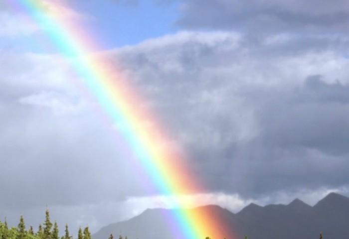 Homeschool Unit Studies: Rainbow Unit Study