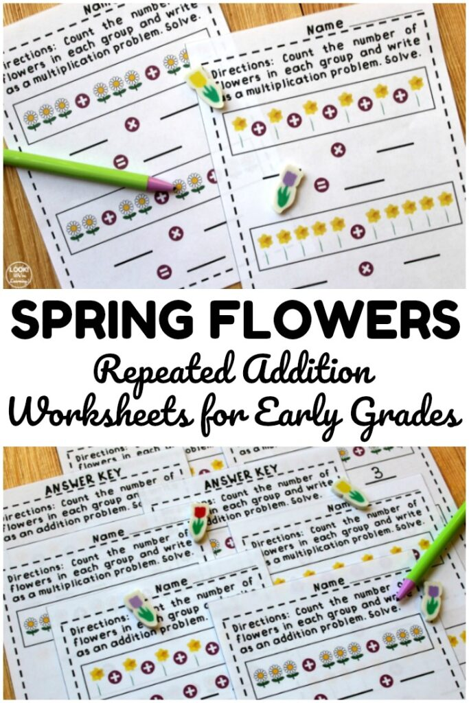 Use these flower repeated addition worksheets to help early grade students practice adding and basic multiplying!