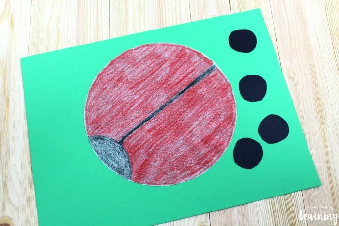 Coffee Filter Ladybug Craft for Kids