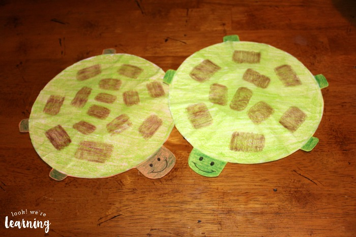 Coffee Filter Turtle Craft for Kids