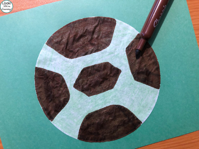 Coffee Filter Turtle Craft to Make with Kids