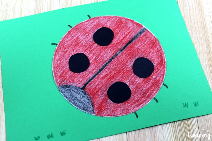 Cute Coffee Filter Ladybug Craft for Kids