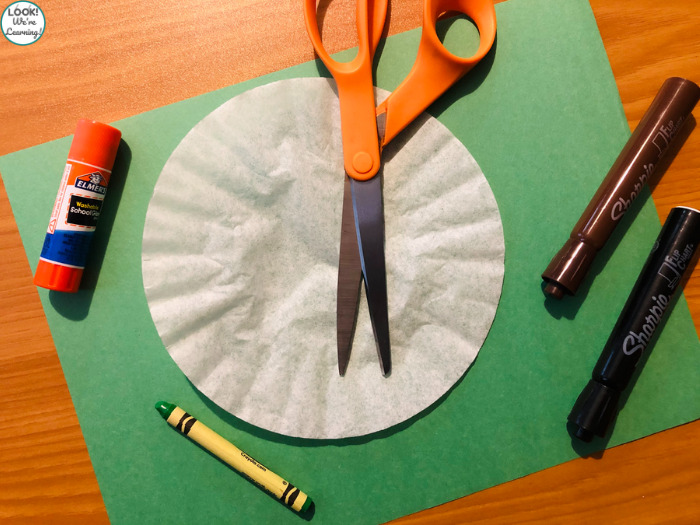Easy Coffee Filter Turtle Craft Supplies