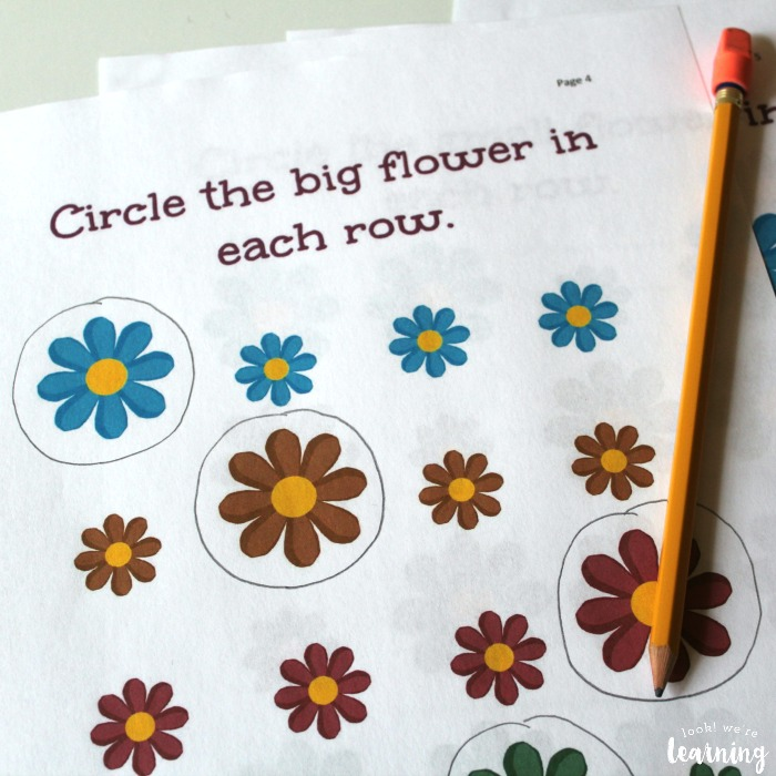 Flower Size Sorting Printables for Kids