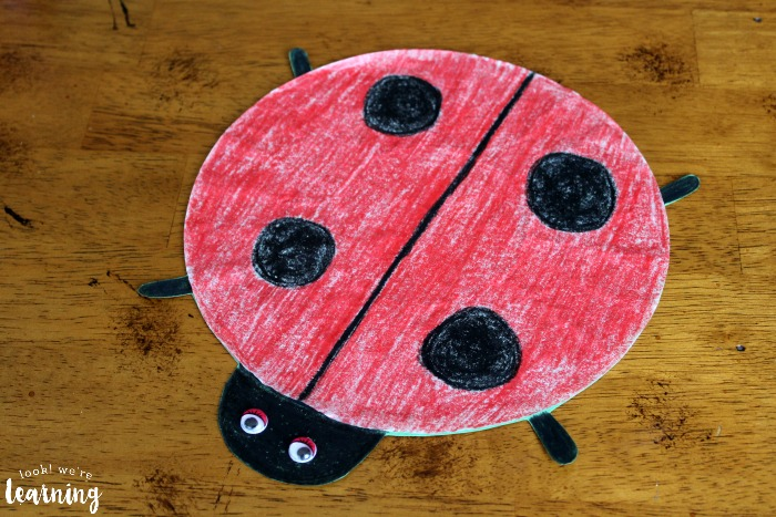 Fun Ladybug Coffee Filter Craft - Look! We're Learning!