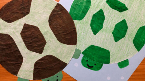 How to Make an Easy Paper Turtle Craft