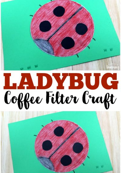 Coffee Filter Crafts for Kids: Coffee Filter Ladybug Craft