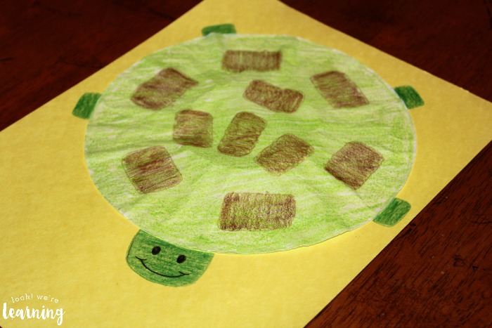 Making Turtles Out of Coffee Filters