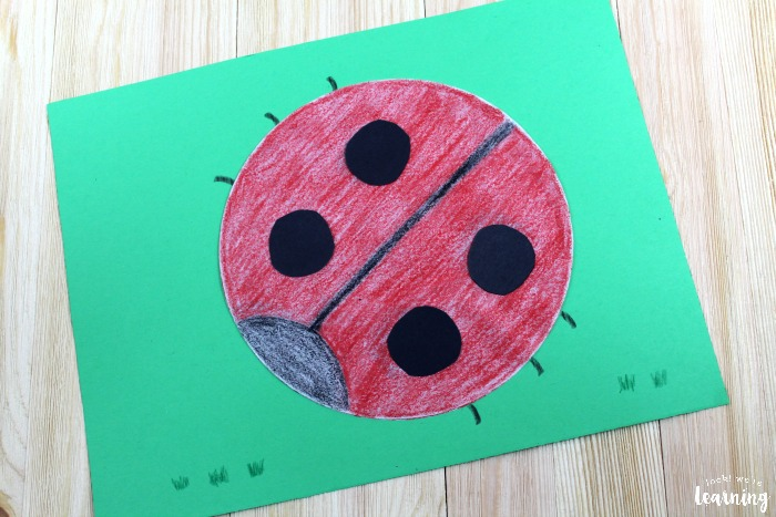 Making an Easy Coffee Filter Ladybug Craft