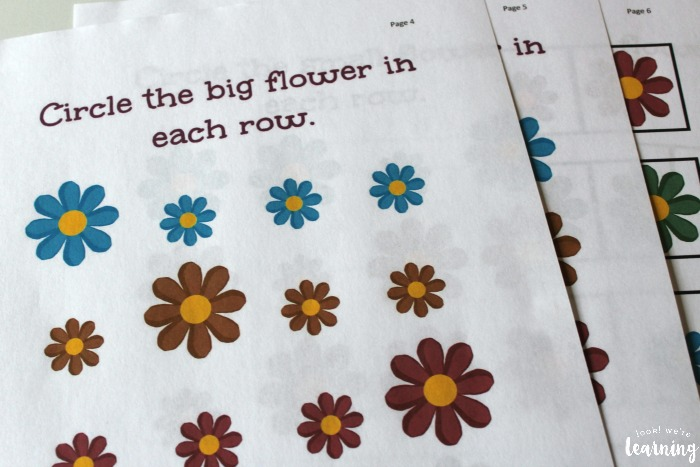 Printable Big and Small Size Sorting Flower Size Sorting Printables