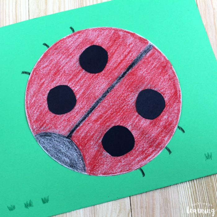 Easy Coffee Filter Ladybug Craft Look Were Learning